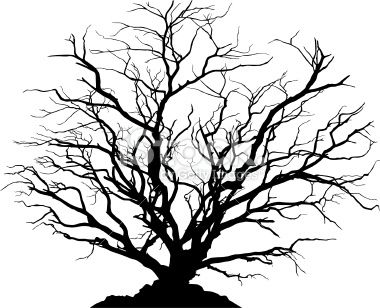 380x308 Silhouette Of A Round Shaped Deciduous Tree With No Leaves. Ground