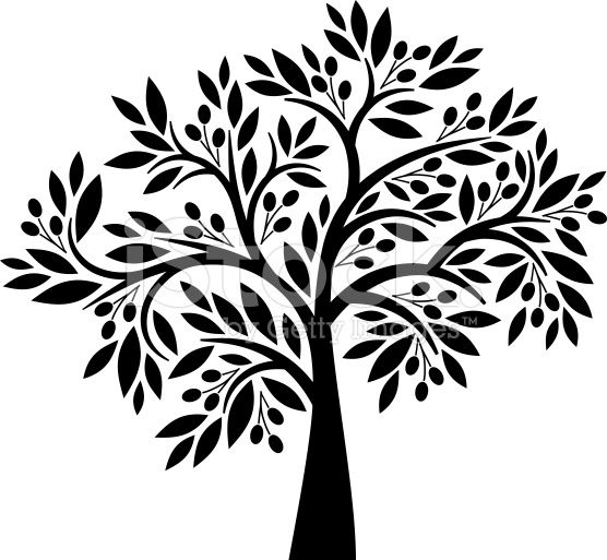556x513 Decorative Olive Tree With Berries And Leaves Vector Art