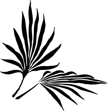 359x368 Fern Frond Vector Free Vector Download (25 Free Vector)