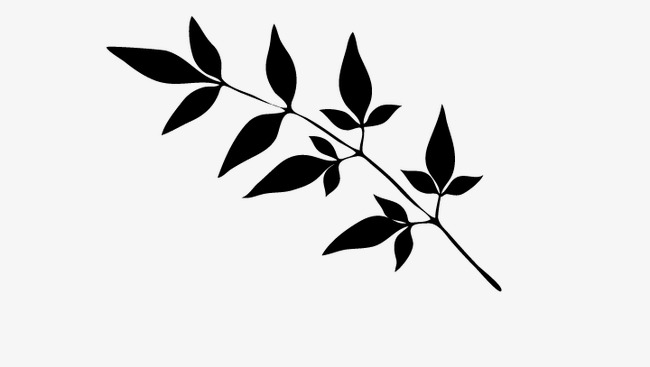 650x367 Leaves, Silhouettes Of Leaves, Leaf Png And Vector For Free Download