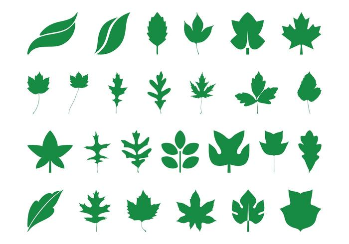 700x490 Leaves Silhouettes Set