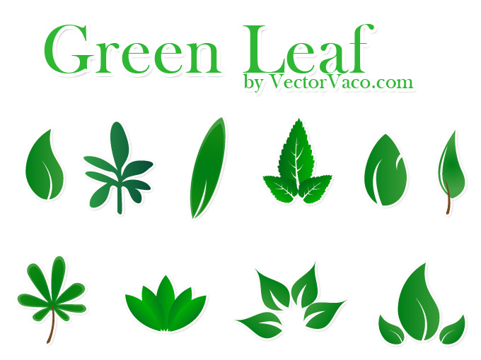 680x510 Vector Green Leaf Vector Download