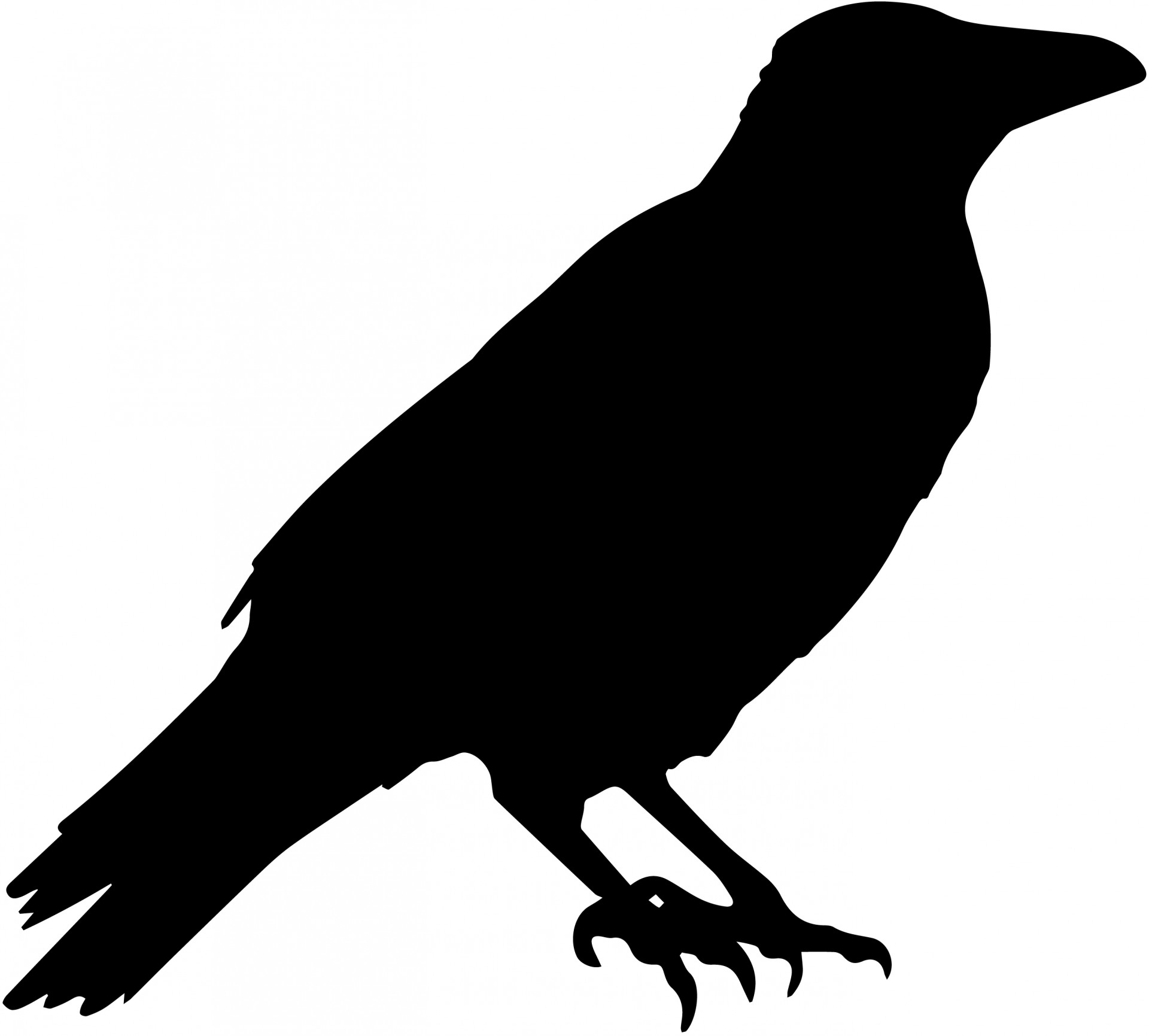 1920x1731 Crow Vector Silhouette Free Stock Photo