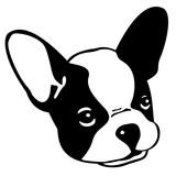 160x160 Dog French Bulldog Seamless Pattern Vector Wallpaper Isolated