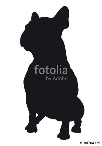 349x500 French Bulldog