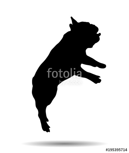 421x500 Silhouette Of A French Bulldog Stock Image And Royalty Free