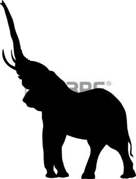 265x350 Perfil De Elefante Trompa Dibujo