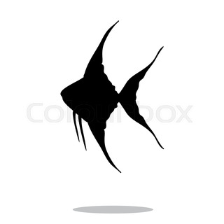 320x320 Freshwater Angelfish Aquarium Fish. Pop Art Retro Vector