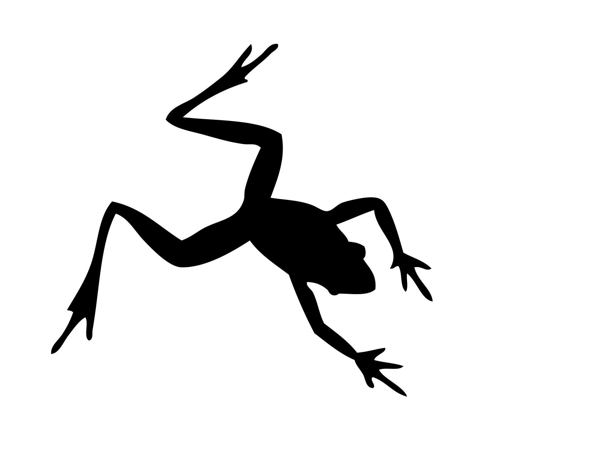 1920x1437 Frog Silhouette Free Stock Photo