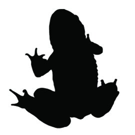 270x270 Silhouette Clipart Frog Many Interesting Cliparts