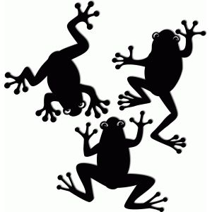 300x300 Image Result For Silhouette Frog Plasma Frogs
