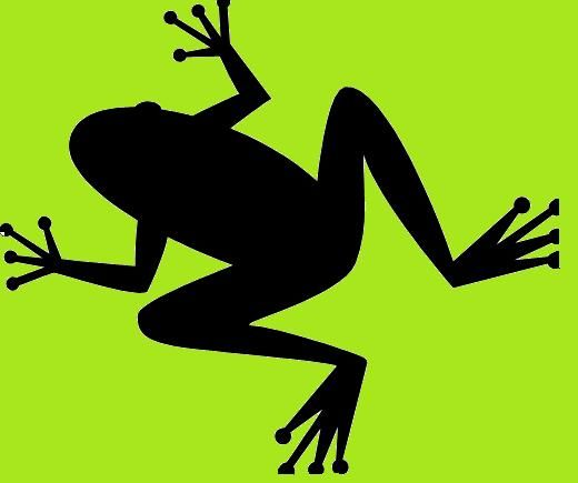 520x435 The Parable Of The Flying Frog Frogs, Silhouettes And String Art