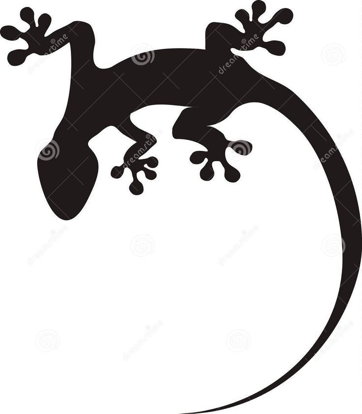 736x840 Lizard Tattoos Designs And Ideas Page 44 Tattoo