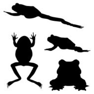 190x190 Collection Of Silhouette Frog Logo In Circle Premium Clipart