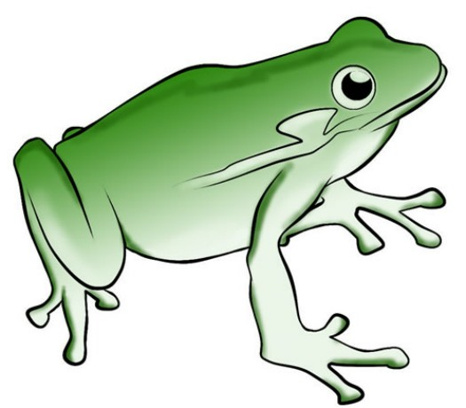 525x460 Leaping Frog Clipart