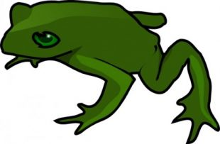 310x203 Frog Clip Art Illustration Free Vector Free Vectors Ui Download