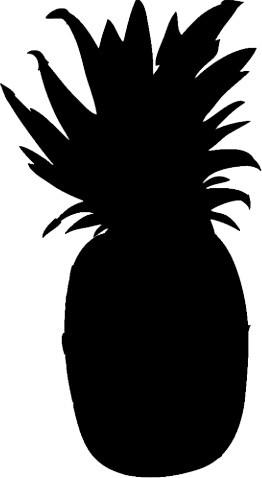 262x478 Pineapple Fruit Silhouette