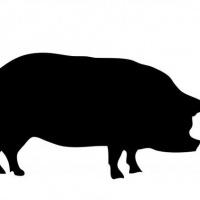 200x200 Simple Line Geometric Style Pig Figure Tattoo Design