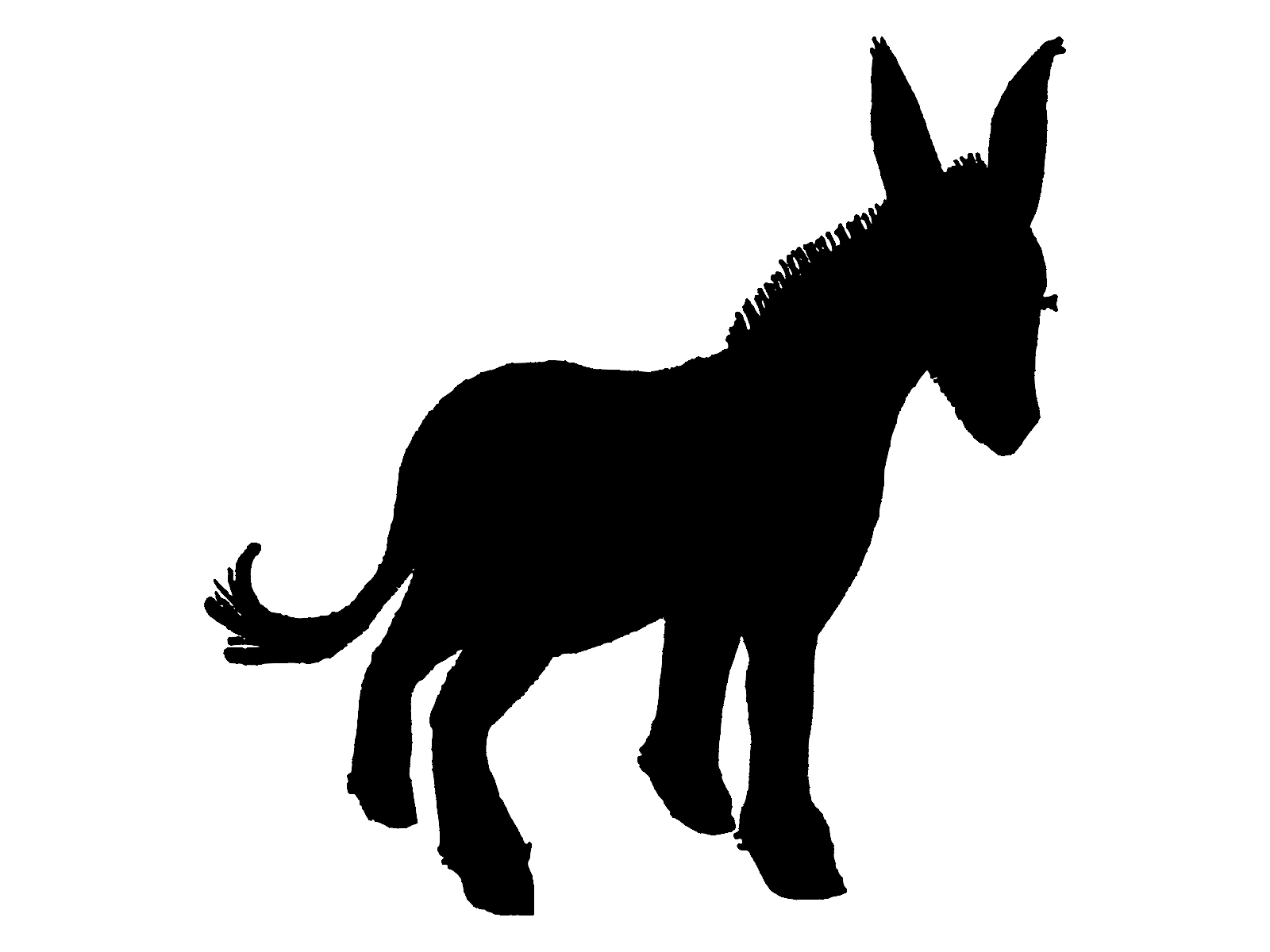 1600x1200 Donkey Silhouette Vector Lucy Luton