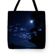 180x180 Full Moon Silhouette Photograph By Karen Nicholson