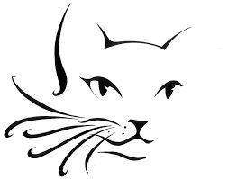 253x199 Gallery Cat Face Outline,