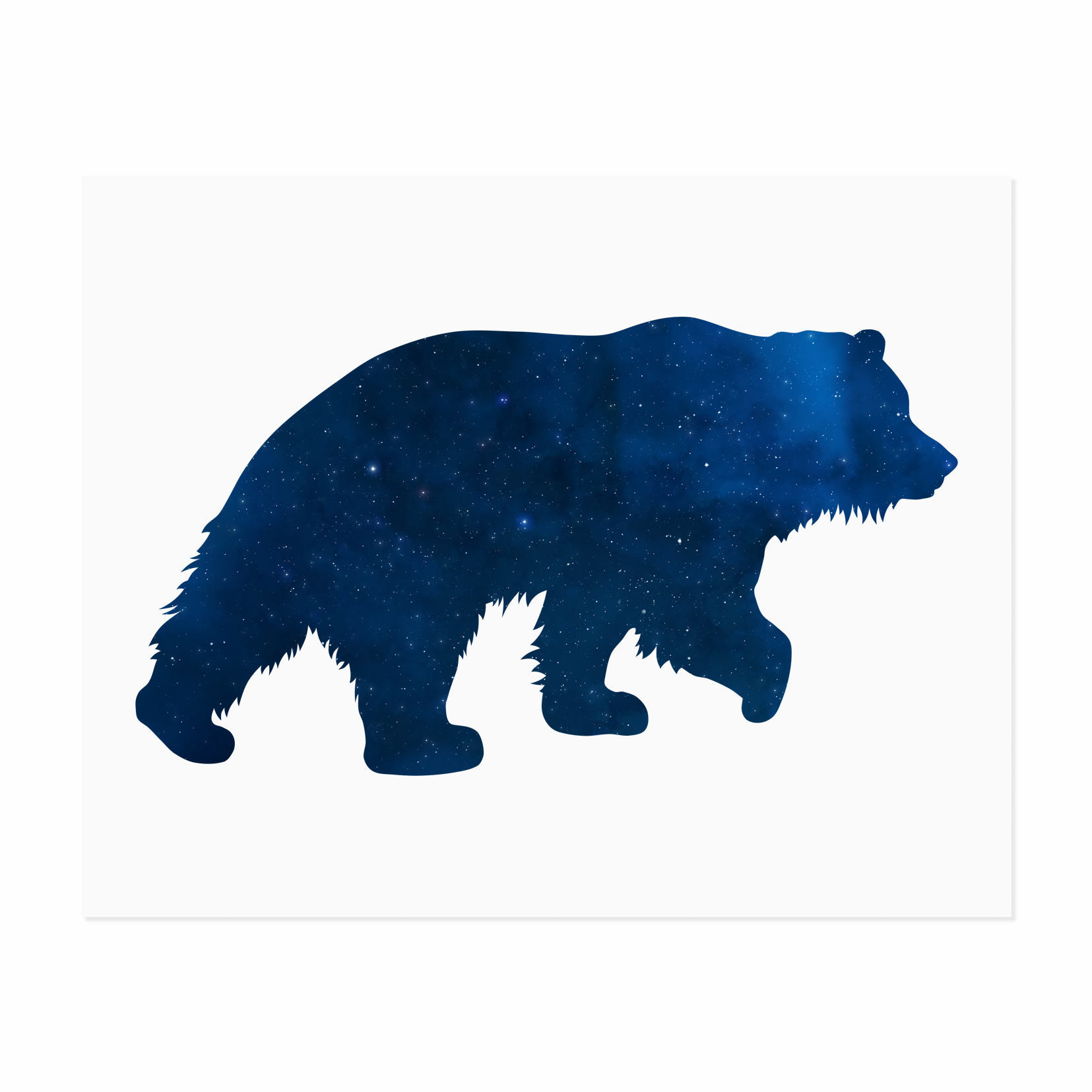 1655x1655 A Starry Galaxy Inside A Beautiful Bear Silhouette. The Perfect