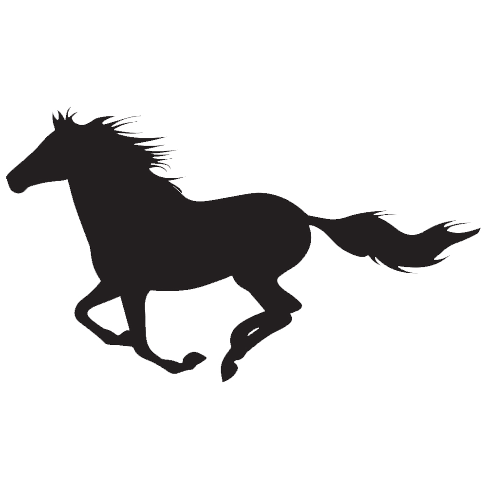 1002x1002 Horse Silhouette Vinyl Sticker Car Decal