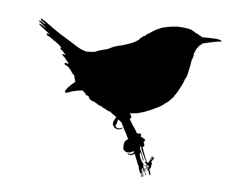 5652x4410 Vector Bird Silhouettes