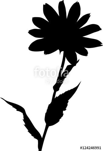 341x500 Garden Black Large Flower Silhouette On White Stock Image