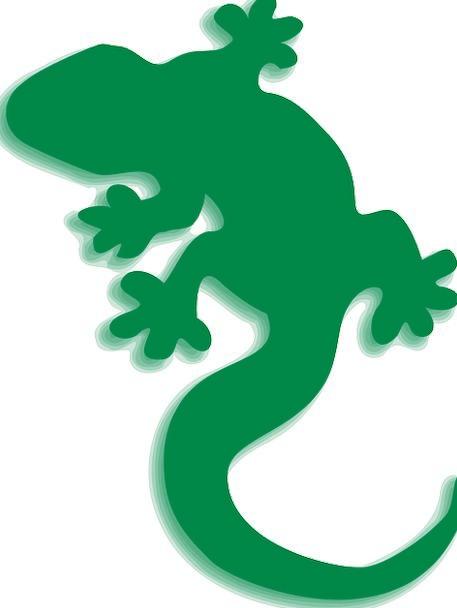 457x608 Lizard, Lime, Gecko, Green, Silhouette, Outline, Shadow, Gumshoe