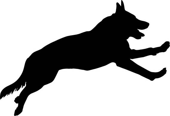 570x389 German Shepherd Svg German Shepherd Vector German Shepherd
