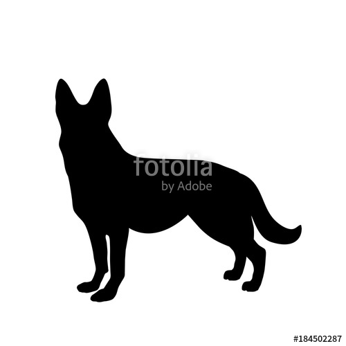 500x500 Black Silhouette Of German Shepherd Dog Standig Sideway Stock