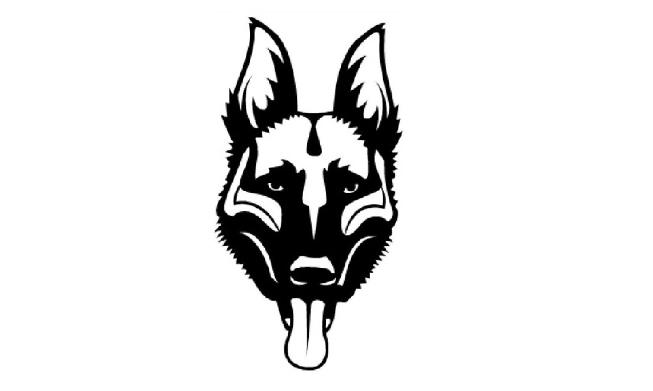 2581x1549 Drawn German Shepherd Face
