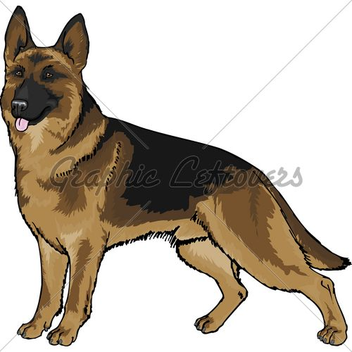 500x500 German Shepherd Vector Clipart Collection