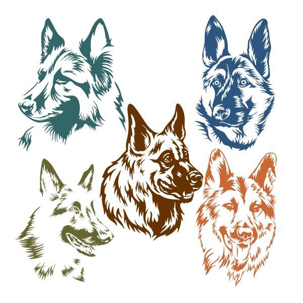 600x600 Pin By Cuttabledesigns On Animals Coreldraw, Cricut