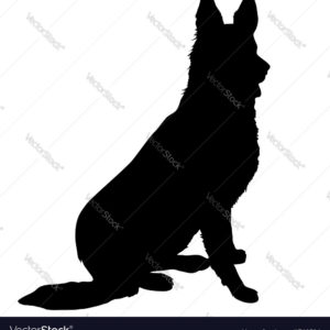 300x300 Splendid German Shepherd Silhouette Royalty Free Vector Image