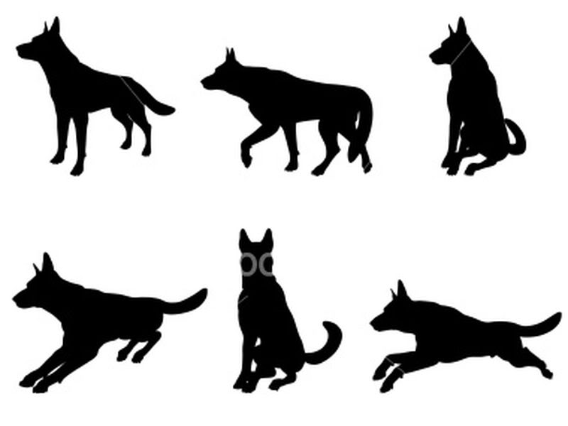 800x600 German Shepherd Clipart Profile Many Interesting Cliparts