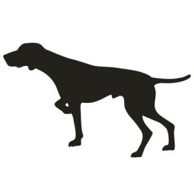 400x400 German Shorthaired Pointer Dog Vinyl Sticker 2 German Short