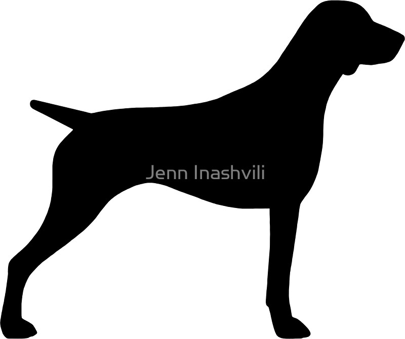 800x670 German Shorthaired Pointer Silhouette(S) Stickers By Jenn