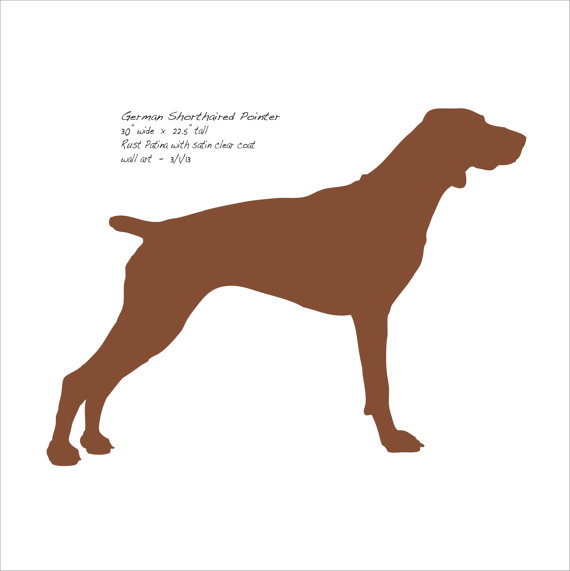 570x571 German Shorthaired Pointer Metal Wall Art 30 Wide
