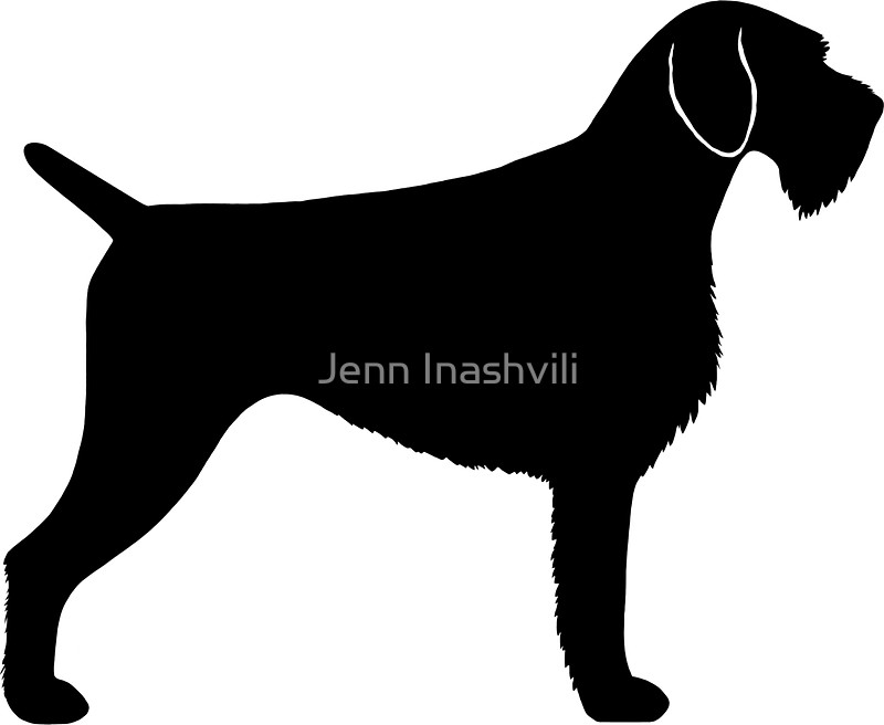 800x656 German Wirehaired Pointer Silhouette(S) Stickers By Jenn