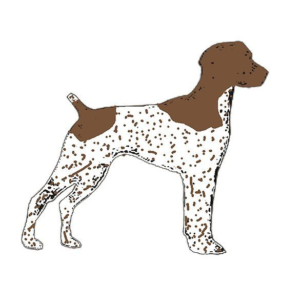 550x550 German Shorthaired Pointer Color Silhouette German Shorthaired