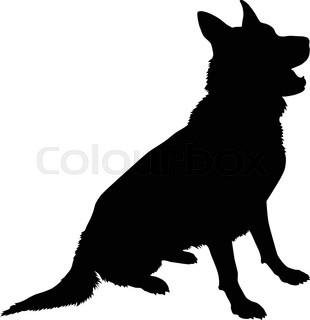 310x320 German Shepherd Dog Head, Black And White Illustration Stock