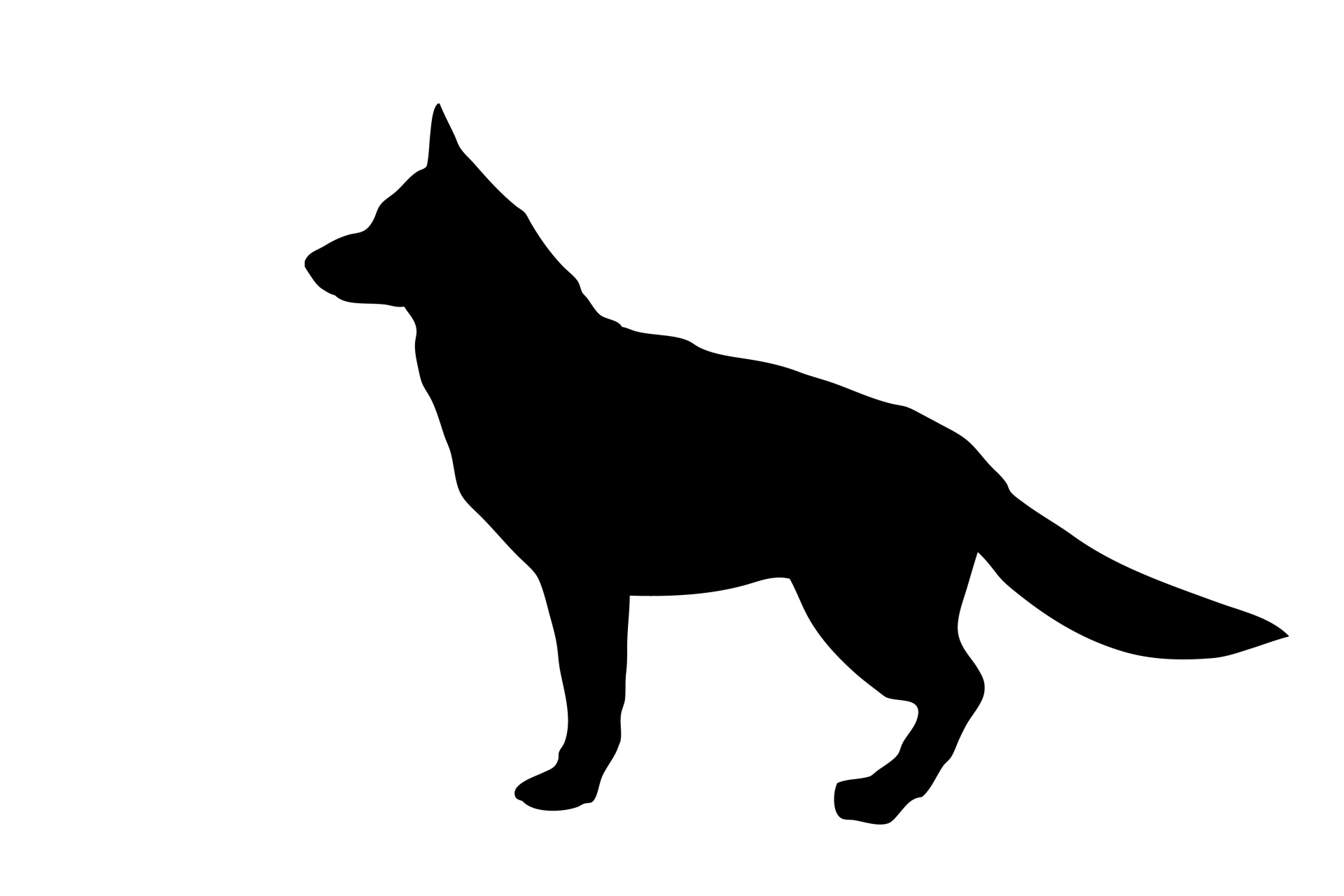1920x1280 Black And White Outline Of A German Shepherd Royalty Free Clipart