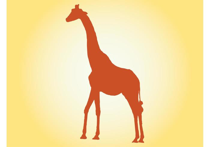 700x490 Giraffe Free Vector Art