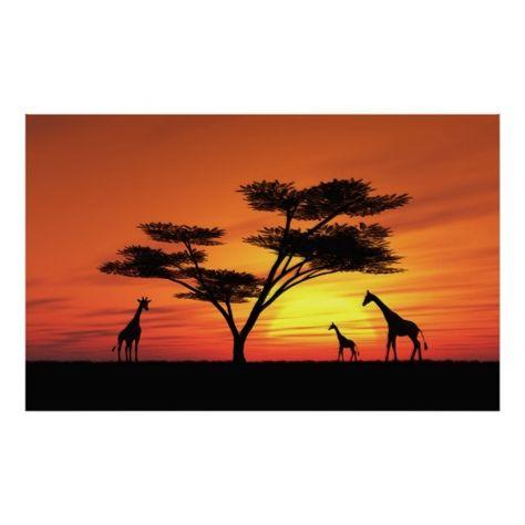 474x474 Fototapet African Sunset