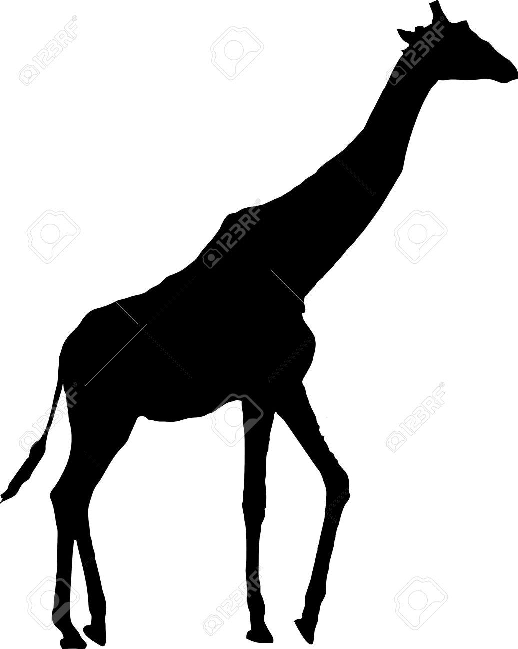 1037x1300 Best Giraffe Silhouette