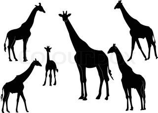 320x228 Stylized Giraffe Vector Illustration. Elegant Animal Tattoo