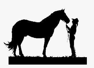 329x238 25 Best Horse Clip Art Images On Horse Clip Art, Horse