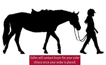 355x219 Horse Decal, Girls Bedroom Decor, Teen Room Sticker